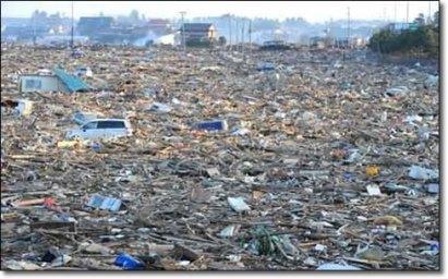 tsunami-environmental-impact